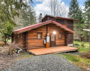 47617 Spring Water Rd E, Eatonville image