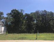 12439 Cotton Blossom Lane, Farragut image