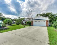 301 Blenheim Court, Conway image