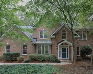 13209  White Birch Terrace, Davidson image