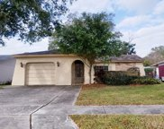 1724 E Groveleaf Avenue, Palm Harbor image