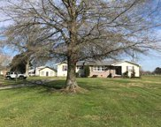321 Forest Chapel Road, Hartselle image