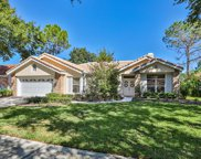 17919 Holly Brook Drive, Tampa image