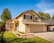 3920 Tawny Meadow Way, Antelope image