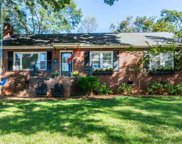 20 W Mountainview Avenue, Greenville image