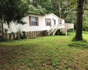 1296 Old Clarksville Pike, Pleasant View image