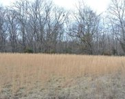 Lot 3 Tyler Branch  Road, Perryville image