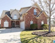 100 Waterford Highlands Trl, Calera image
