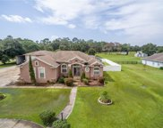 8201 Todd Place, Plant City image
