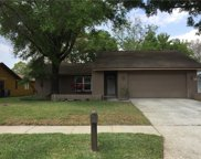 3567 Fairway Forest Drive, Palm Harbor image