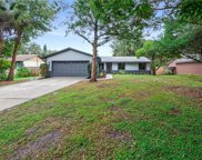 629 Dolphin Road, Winter Springs image