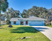 4068 Cannon Court, Kissimmee image