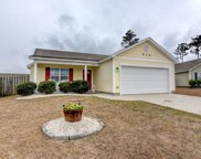 1641 Royal Pine Court, Leland image