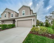 419 Harbor Springs Drive, Palm Harbor image