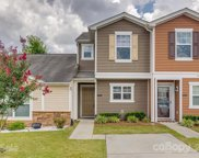 301 River Clay  Road, Fort Mill image