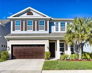11610 Quiet Forest Drive, Tampa image