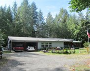 981 Cannon Road, Packwood image