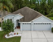 18217 Cypress Haven Drive, Tampa image