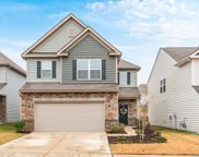 441 Triple Branch  Trail, Fort Mill image