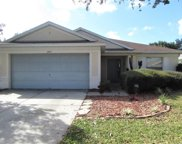11405 Coconut Island Drive, Riverview image