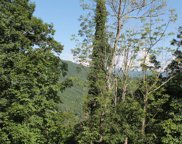 Baines Mountain, Bryson City image