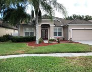 10715 Deerberry Drive, Land O' Lakes image