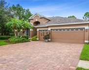 10417 Greenhedges Drive, Tampa image