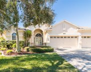 17738 Currie Ford Drive, Lutz image