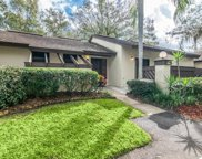 2965 Buttonbush Court, Palm Harbor image