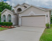 34514 Cliffcreek Court, Wesley Chapel image