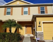 13905 River Willow Place, Tampa image