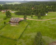 25278 Wittrock Rd, Custer image