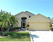 19724 Glen Elm Way, Orlando image