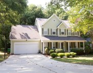 4528  Saxonbury Way, Charlotte image