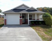 1321 William Holt Blvd, Sevierville image