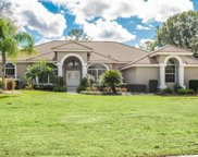 30248 Laurelwood Lane, Wesley Chapel image