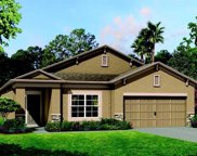 10736 Pleasant Knoll Drive, Tampa image