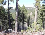 Spokane Lode #1 Ida Grey Road, Lead image