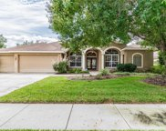 4526 Serenity Trail, Palm Harbor image