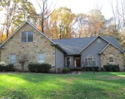 523 Brooktree Rd, Knoxville image