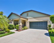 14246 Blue Dasher Drive, Riverview image