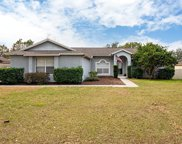 12937 Brown Bark Trail, Clermont image