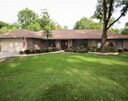 3503 Misty Oaks Place, Brandon image