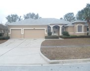 4312 Fawn Meadows Circle, Clermont image