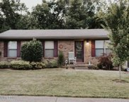 10103 Rolling Stone Dr, Louisville image