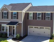 603 Maplestead Farms Court, Greenville image