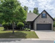 480 Chapel Hill Cove, Fultondale image