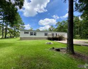 33872 Percy Young Rd, Walker image