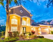 10144 Deercliff Drive, Tampa image