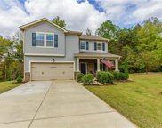 1100 River Birch Way, Mebane image